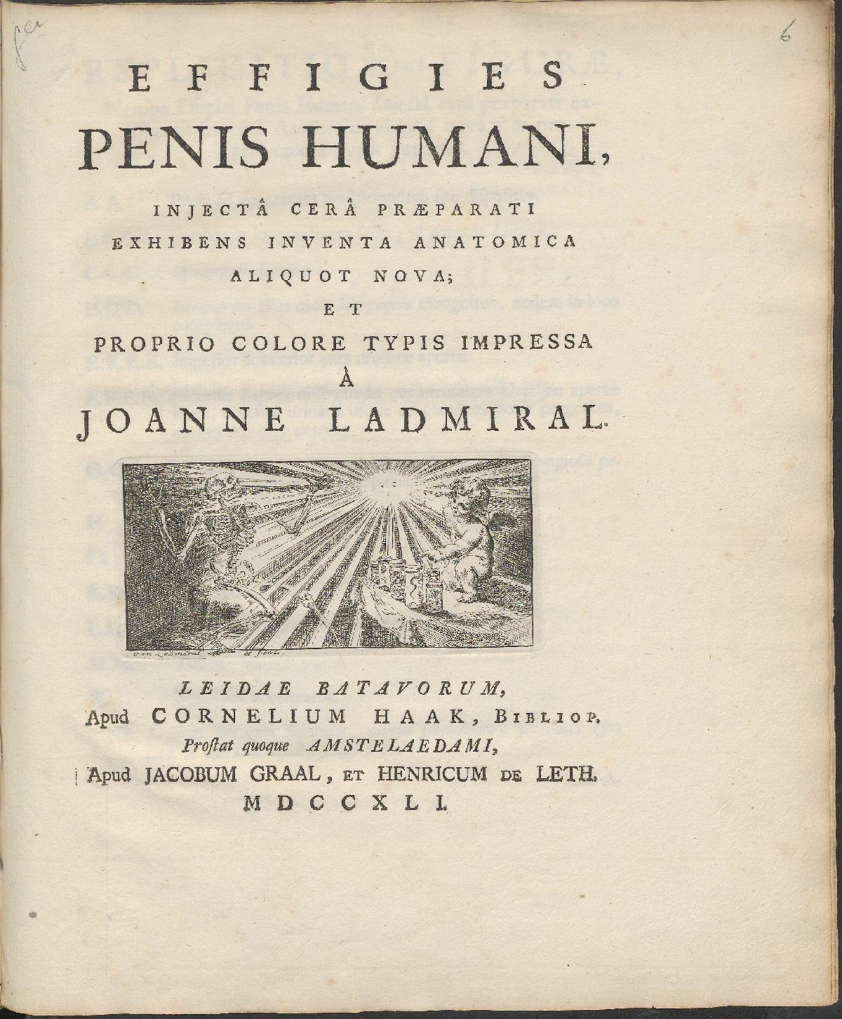 Effigies penis humani, injecta cera praeparati exhibens inventa ...