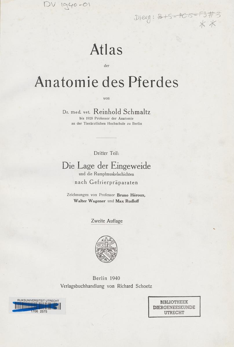 Groß Die Anatomie Des Pferdes Bilder - Menschliche Anatomie Bilder ...